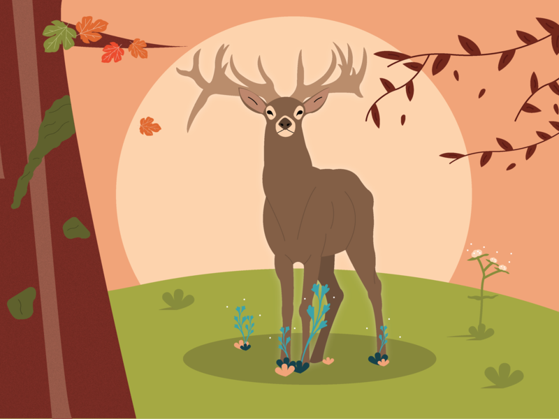 Majesty forest deer cerf illustrator art illustrator illustration