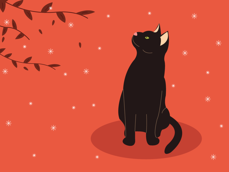 Black cat halloween illustrator art illustrator illustration cat