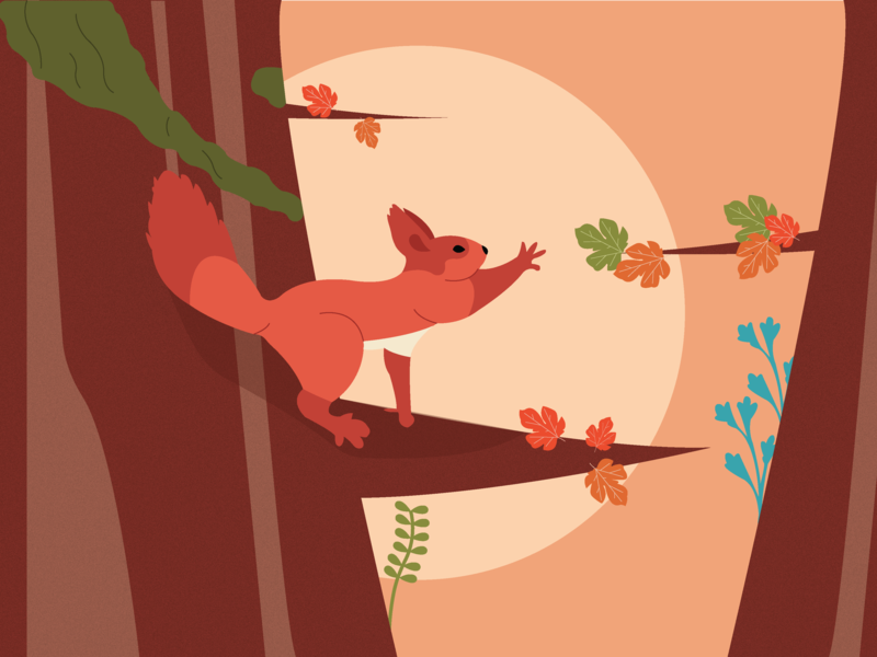 Little Squirrel cute squirrel forest illustrator art illustrator illustration