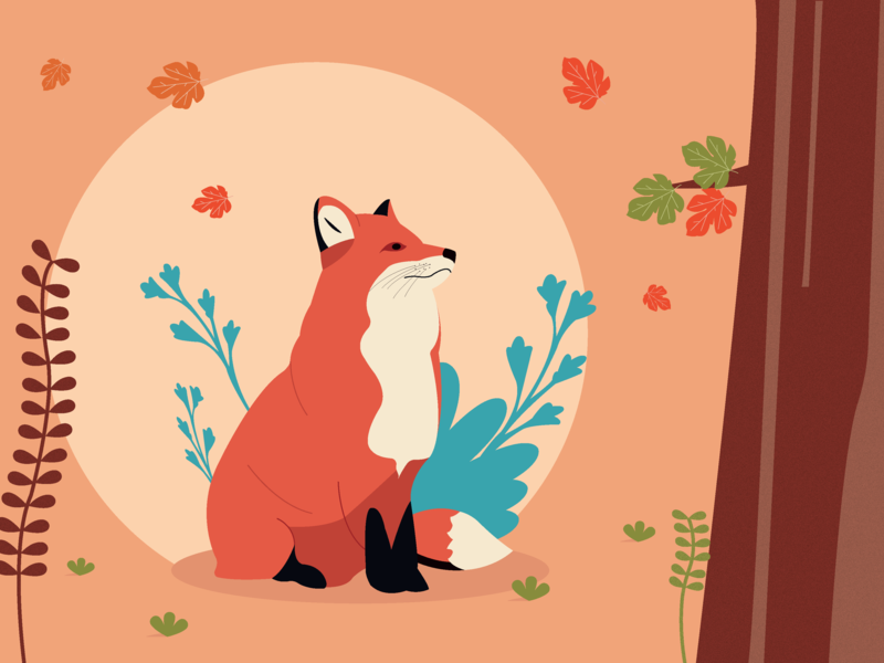 Fox cute fox forest illustrator art illustrator illustration