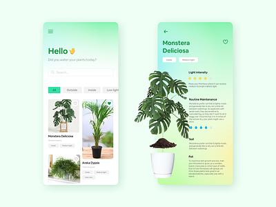 Plants interface app plants gradient ui design