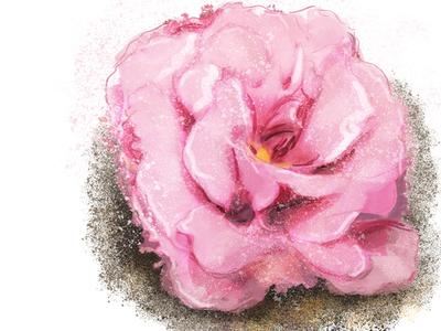 Flower Study (digital painting)