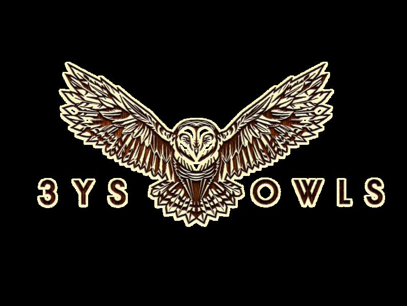 3YS Owls