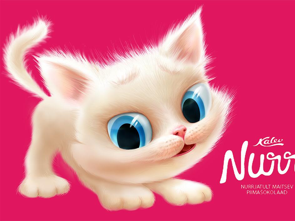 Kitten animal pink cat kitten illustration