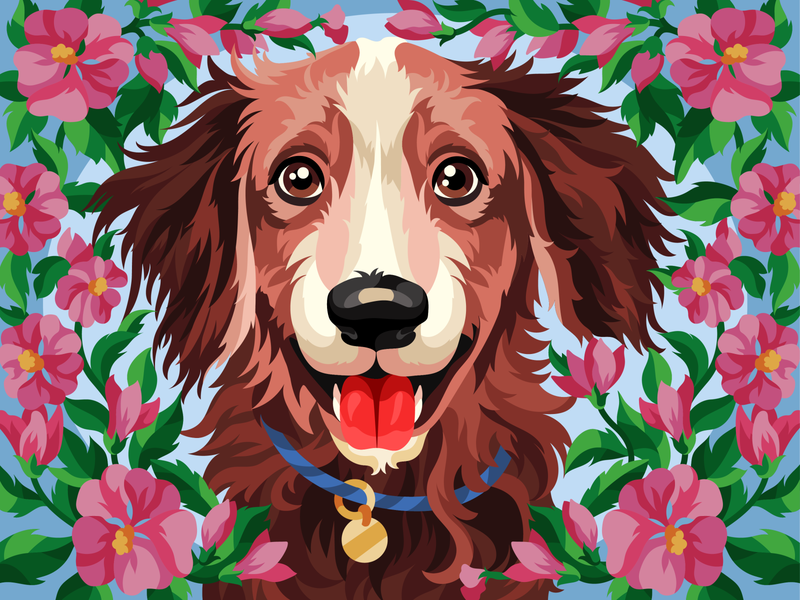 Beautiful dog brown adobe illustrator pet dog illustration dog flowers gameillustration vectorillustration gallerythegame coloringbook beresnevgames vector artwork decorative illustration vector illustration