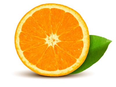 Vector Orange illustrator tutorial realistic vector orange
