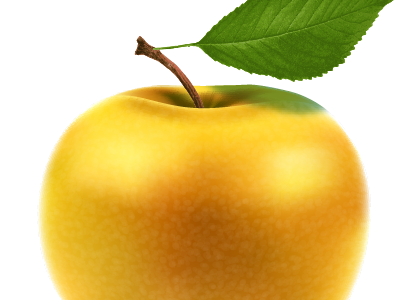 Vector Apple vector fruit leaf food vegetarian succulent ripe temptation delicious dessert sweet organic