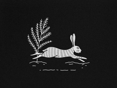 Jack Rabbit 2