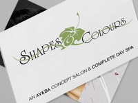 Shapes & Colours Logo