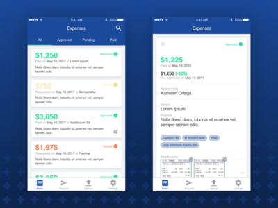 Fincheck App app finance fintech iphone ios mobile user interface ux ui