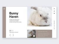 Web landing page design-bunny shelter