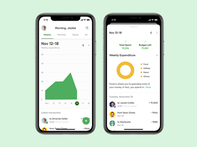 Bolt - Quick Expense Management mobile ui ux ui ios mobile app design