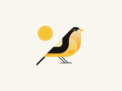 Finch minimal tree branch cardinal illustrator iconography icon illustration nature bird