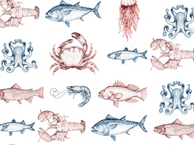 Sea Creature Pattern