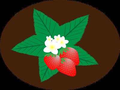 Strawberry strawberryflowers flowers strawberry illustration