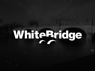 White Bridge Logo brand identity negative branding logo bridge