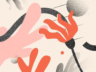 Experimental Illus #1 illustrator art flowers puebla illustration