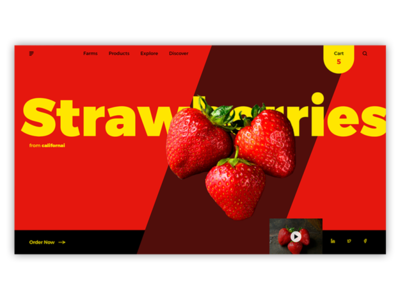 Ecommerce website design for strawberry farm in california