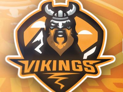 Viking Mascot Showcase (13$)