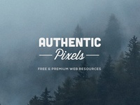Introducing Authentic Pixels