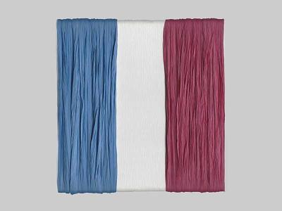 Paris November 2015 flag fraternité liberté égalité paris