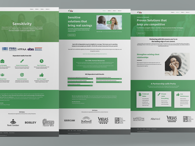 DSI Website Redesign digital marketing marketing design ui web designer website wordpress design wordpress web design