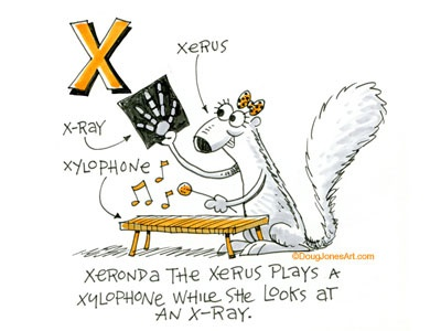 X is for Xerus