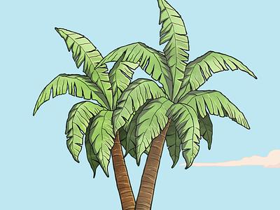 Palmtrees brush art photoshop illustraion palm leaf palm palm tree
