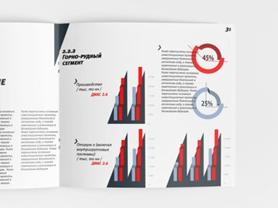 Infographic and layout annual report infographic layout
