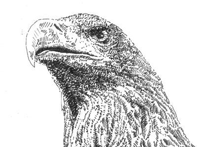 First stage - eagle has landed sketch
