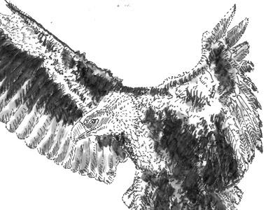 Eagle has landed ;) sketch