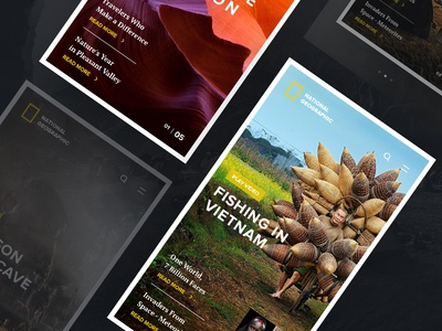 National Geographic Mobile app geographic national mobile ios ux ui