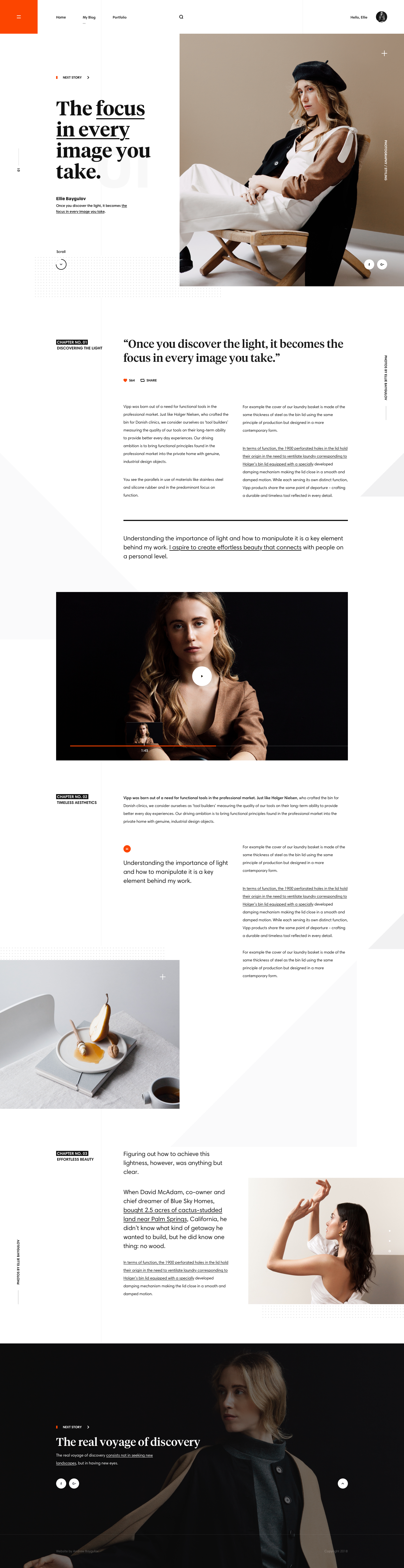 contoh web desain - portfolio