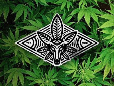 Magic Doe Hemp Logo branding logo dusan klepic vintage badge health magical vintage medical leaf hemp cannabis deer stag doe oil magic