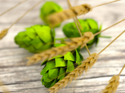 Hops and wheat 3d render