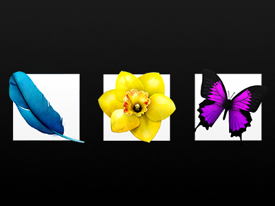 CS6 Icons