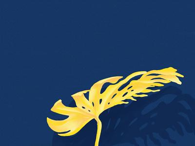 Monstera Jaune yellow monstera plant drawing vegetal jungle garden forest botanical botanic illustration dessin