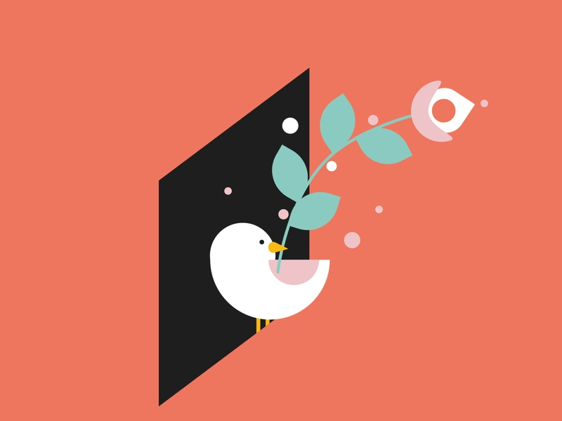 ActionAid Illustrations colourful illustration window brand identity branding design branding flatdesign geometric bird illustration minimal flower vector positive message message bird