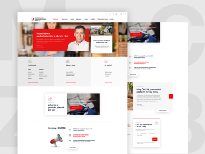 CMZRB Bank web design website design design website webdesign web ux ui