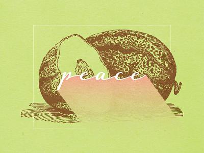 Fruits Of The Spirit - PEACE galatians biblical scripture christian design christian designer graphic design texture fruit illustration illustration fruit peace