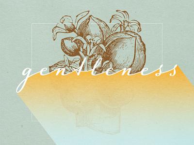 Fruits Of The Spirit - GENTLENESS scripture illustration art sketching typography christian designer christian design fruit illustration graphic design fruit gentleness