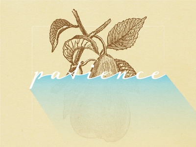 Fruits Of The Spirit - PATIENCE