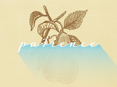 Fruits Of The Spirit - PATIENCE fruit scripture typography illustration texture christian designer christian design graphic design