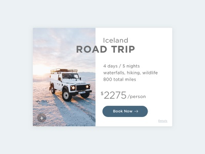 Info Card travel trip details photography minimal ux detail card info card 045 daily100 dailyui
