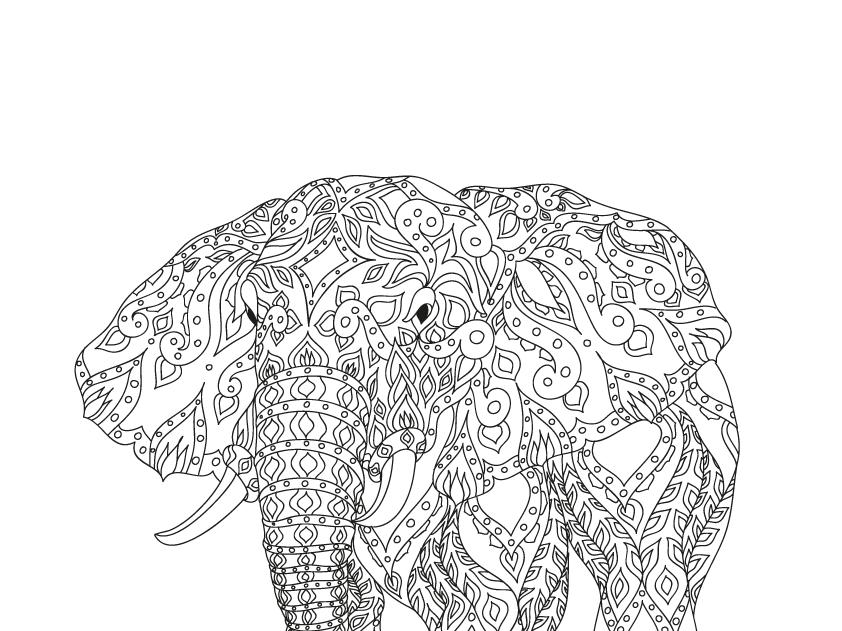 Elephant weave contour line art vector pattern elephant