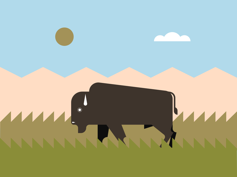 Bison illustrator retro simple minimalist illustraion seattle illustrations illustration illustration digital illustration art