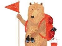Niedźwiedź odkrywca