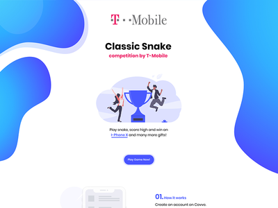 Competition Landing Page
