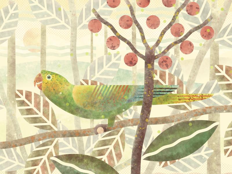 Parrot 2 aratinga parrot vector design illustration