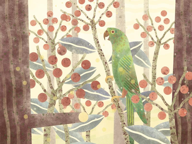 Parrot 3 aratinga bird parrot bicycle design illustration
